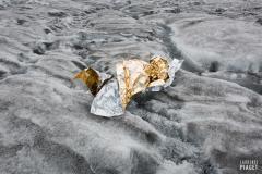 Survie_Glacier_d_Aletsch_Laurence_Piaget-Dubuis-6271
