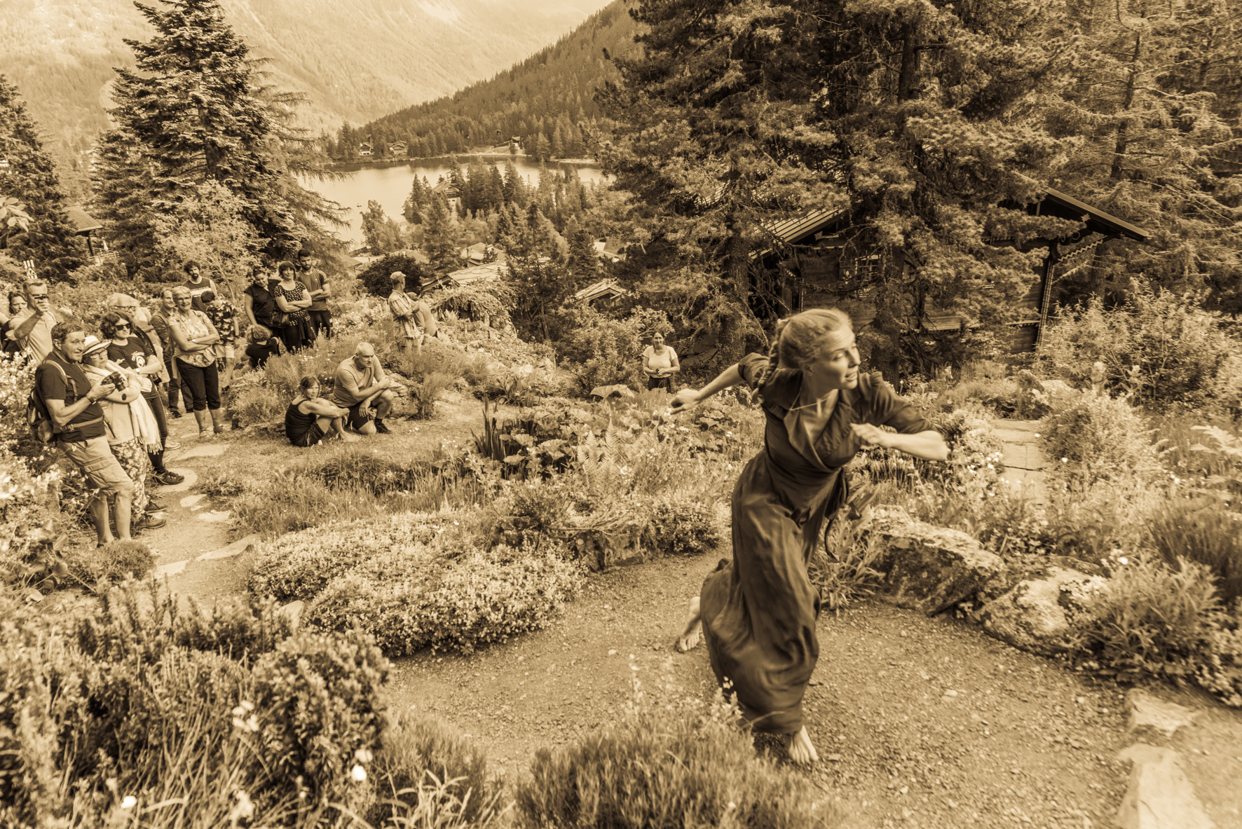19062021-Flore-Alpe-30249
